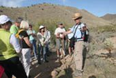 Hikes highlight Sonoran flora, fauna