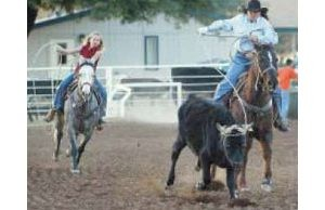 Queen Creek puts spurs to horse park planning