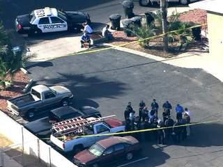 Mesa apartment shooting