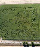 Schnepf Farms goes Gonzo