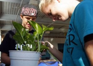 FFA lights students' way to future of agriculture