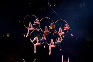 Gymnasts in the rings