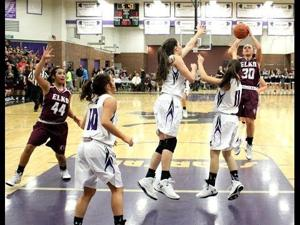 Desirea Danner #30 Elko High School 2014-2015 Basketball Highlights