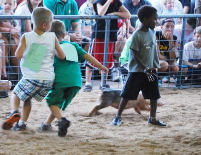 002 Washington Fair Pig Chase.jpg