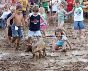 New Haven Youth Fair Pig Scramble