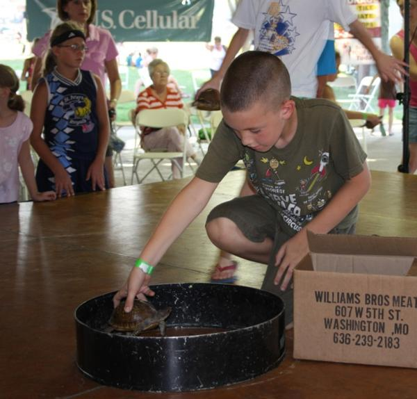 028 Fair Turtle Race.jpg