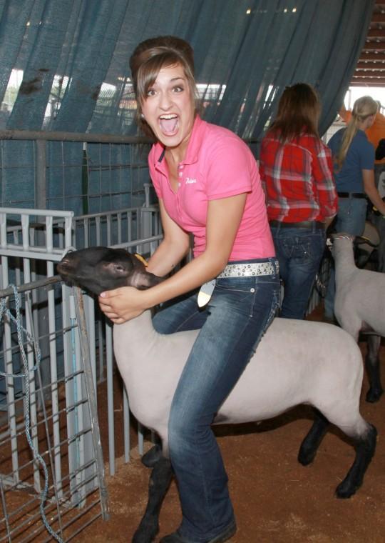 016 Fair Livestock.jpg