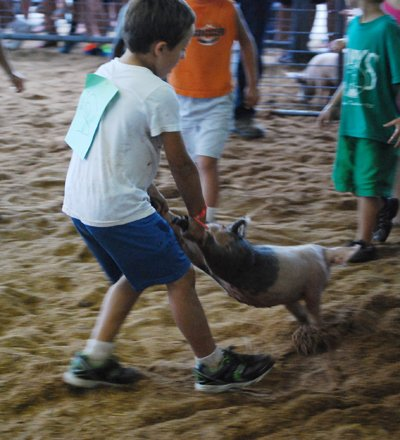 007 Washington Fair Pig Chase.jpg