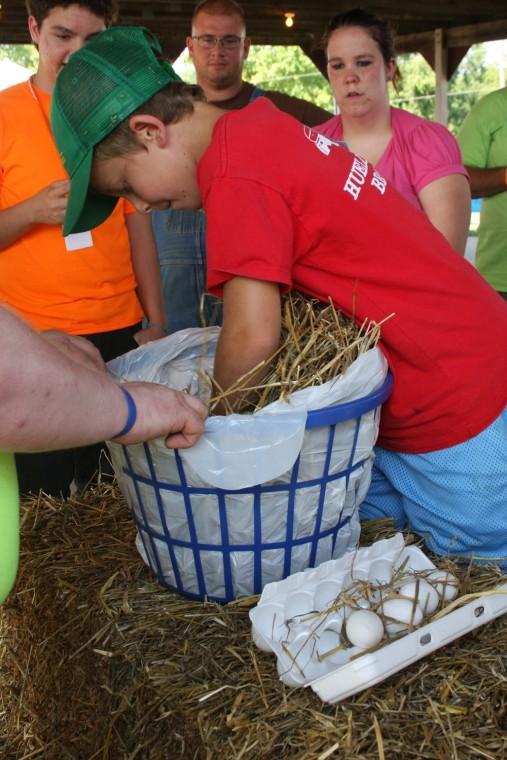 006 Franklin County Fair .jpg