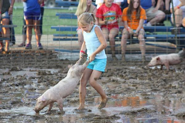004 Franklin County Fair Pig Scramble.jpg