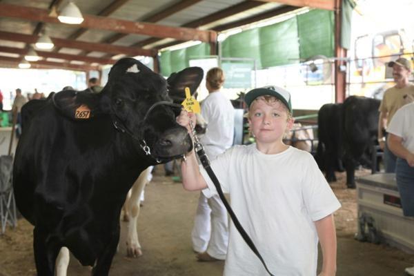 030 Fair Livestock.jpg