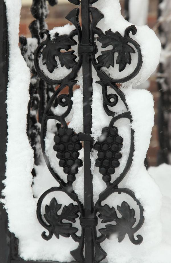 017 March Snow.jpg