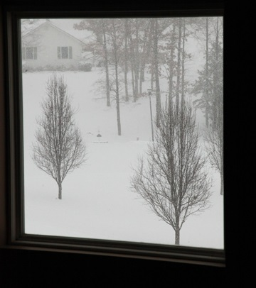 Snowy View