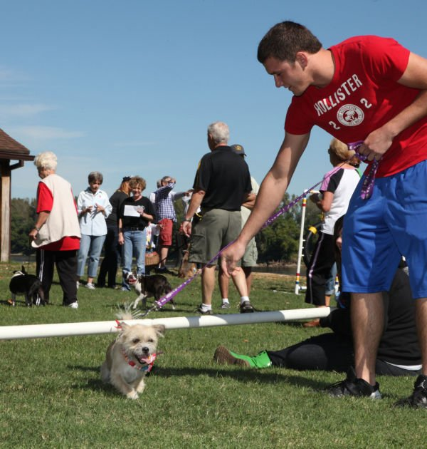 013 Strut Your Mutt 2013.jpg