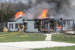 Baucky Meadow Blaze