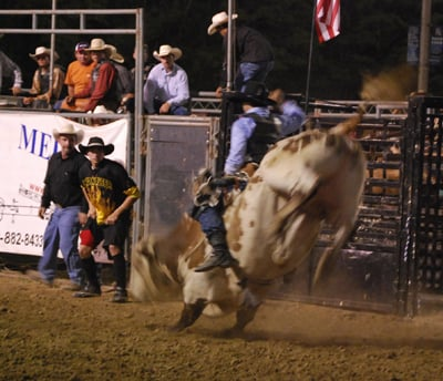 009 Fair Bull Riding.jpg