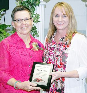 2013 St. Clair Chamber Awards Volunteer of the Year