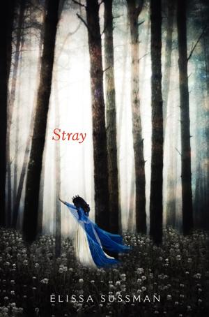 "Review: ""Stray"""