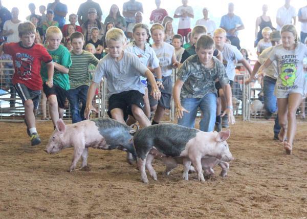 022 Fair Pig Chase 2014.jpg