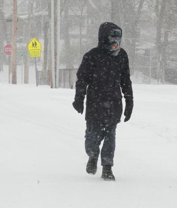 Walk in Snow