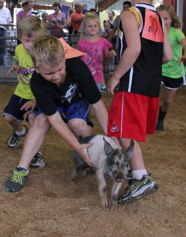 014 Pig Chase 2013.jpg