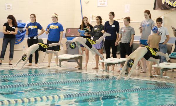 016 YMCA Swim Meet Jan 2014.jpg