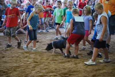 013 Washington Fair Pig Chase.jpg