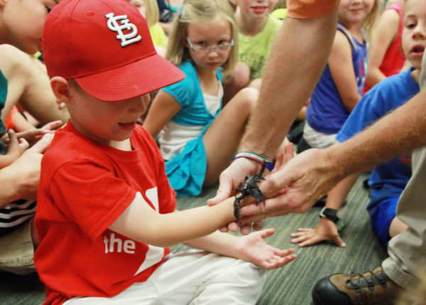 032 Reptile Show at Library 2014.jpg