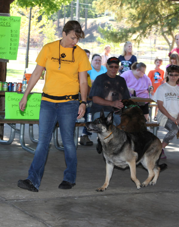 016 Strut Your Mutt 2013.jpg