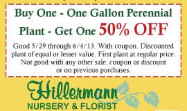 50% Off Perennial BOGO at Hillermann Nursery!
