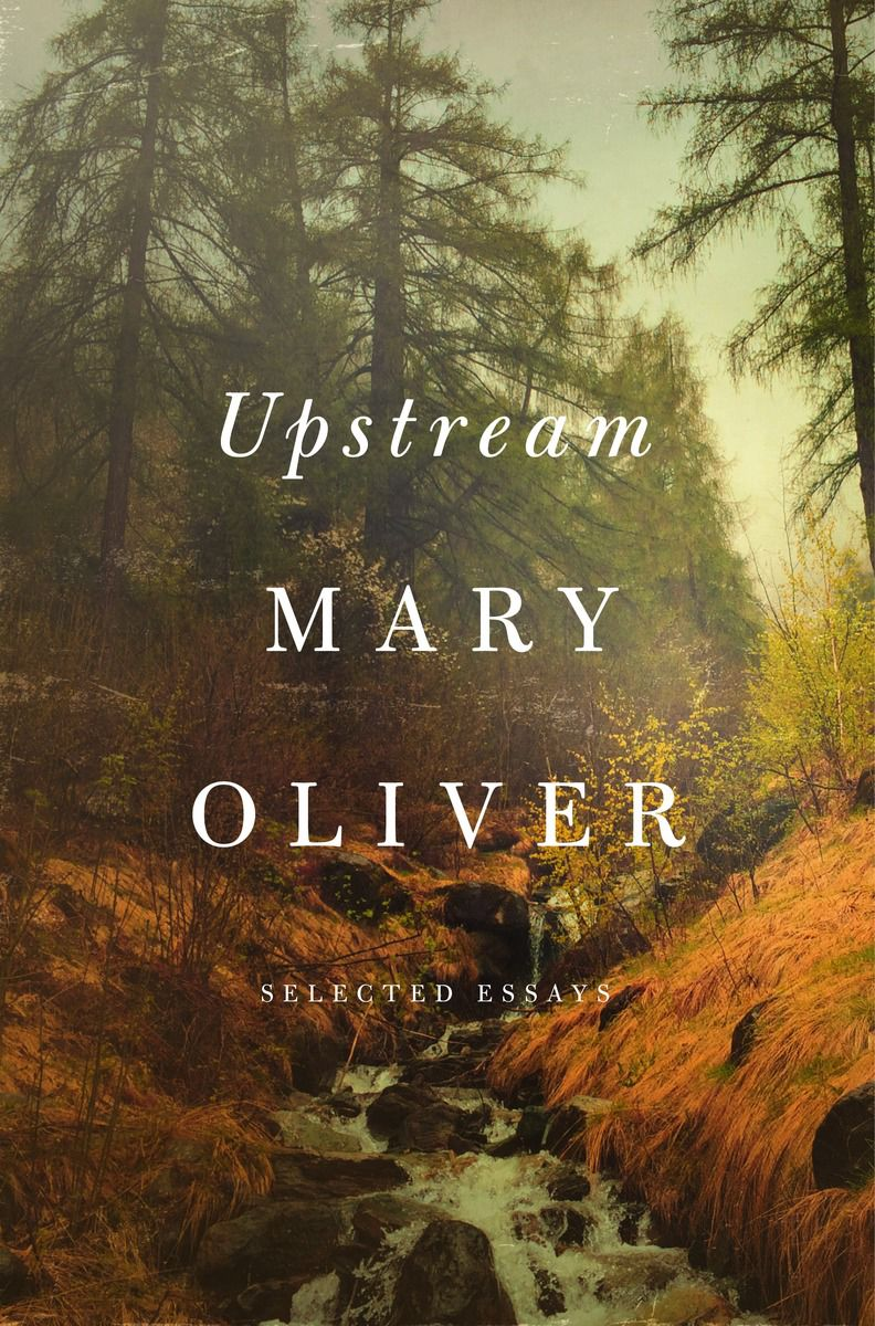 Crossing The Swamp Mary Oliver Essay