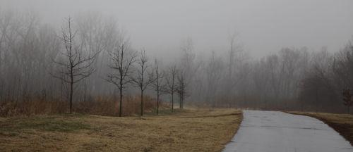 Foggy Washmo 009.jpg
