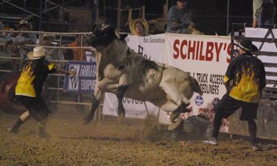 015 Fair Bull Riding.jpg