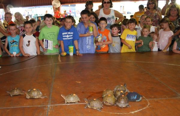022 Fair Turtle Race.jpg
