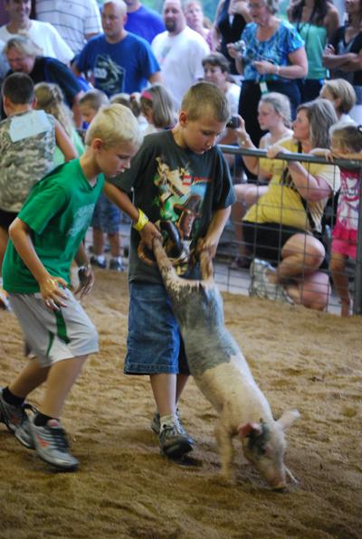 009 Washington Fair Pig Chase.jpg