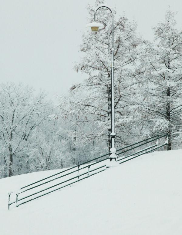 029 Snow December 14 2013.jpg