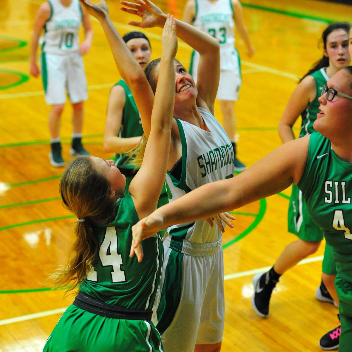 District Girls Basketball — New Haven vs. Silex