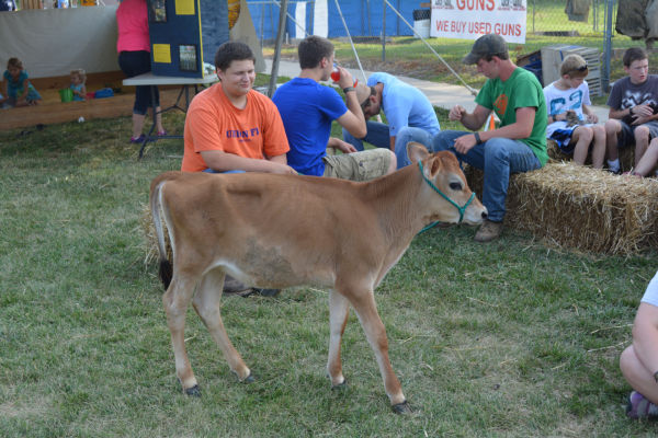 016 Franklin County Fair Friday.jpg