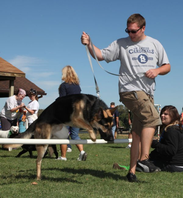 015 Strut Your Mutt 2013.jpg