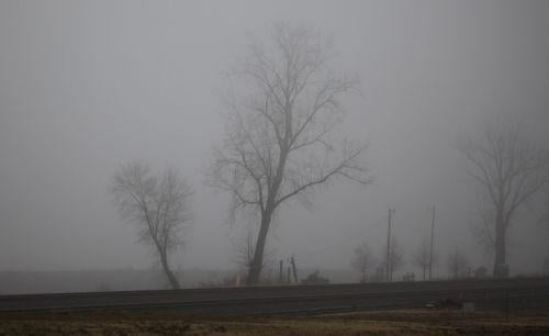 Foggy Washmo 021.jpg