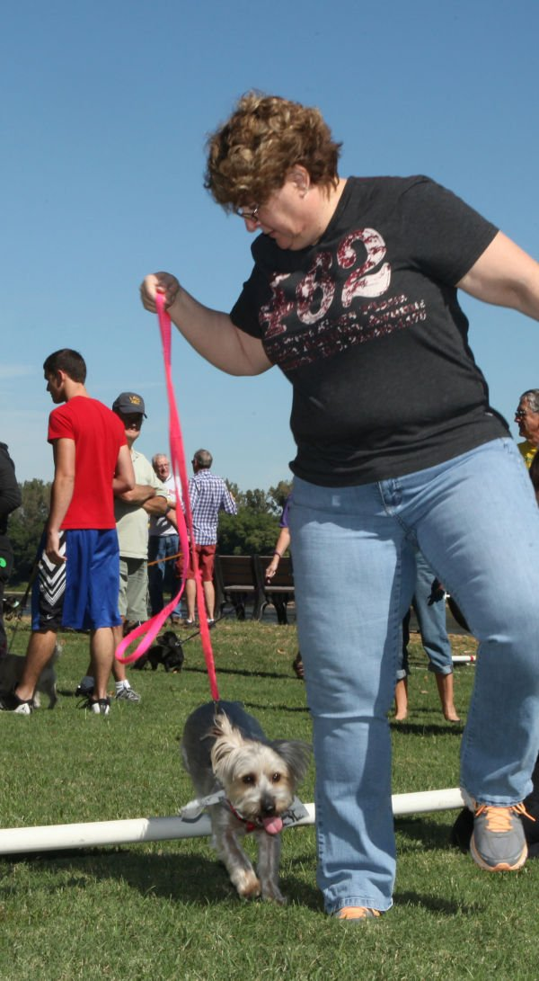 006 Strut Your Mutt 2013.jpg