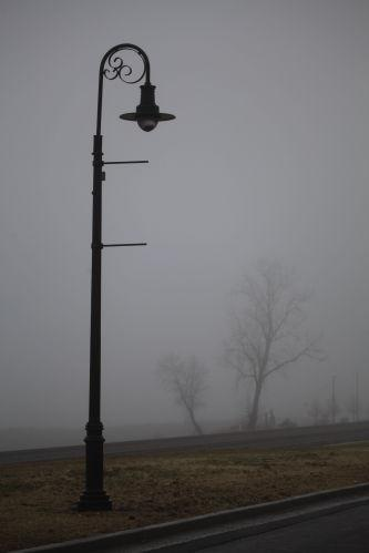 Foggy Washmo 022.jpg