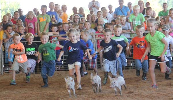 002 Fair Pig Chase 2014.jpg