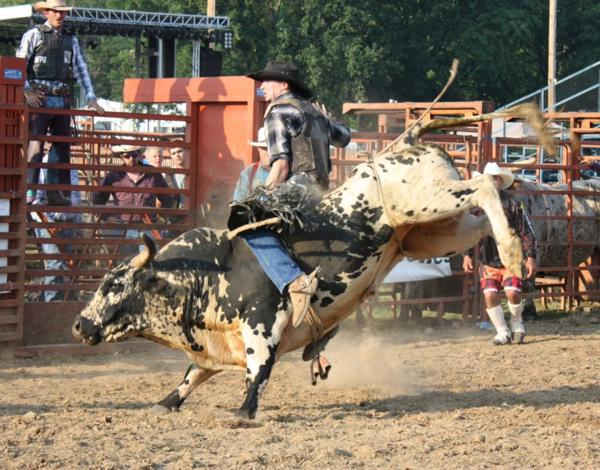 010 Bull Ride.jpg