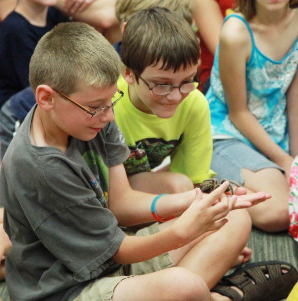 027 Reptile Show at Library 2014.jpg