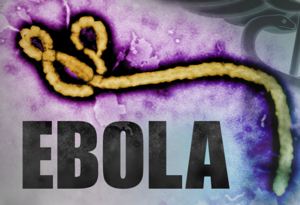 Ebola Patient in Texas Has Died