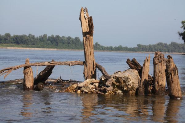 014 Scenes from the River Aug 2013.jpg