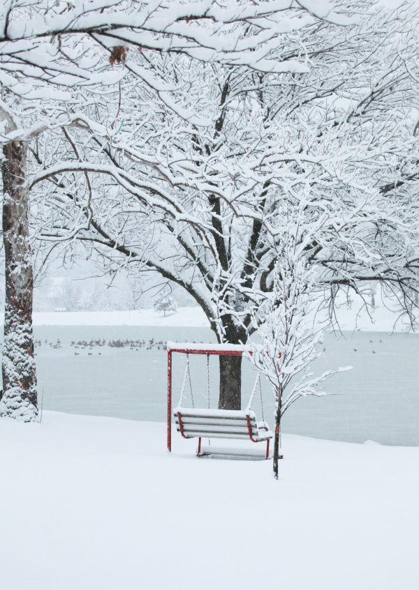 006 Snow December 14 2013.jpg