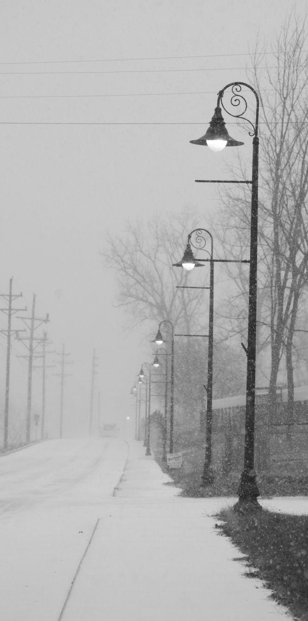 006 Snow.jpg