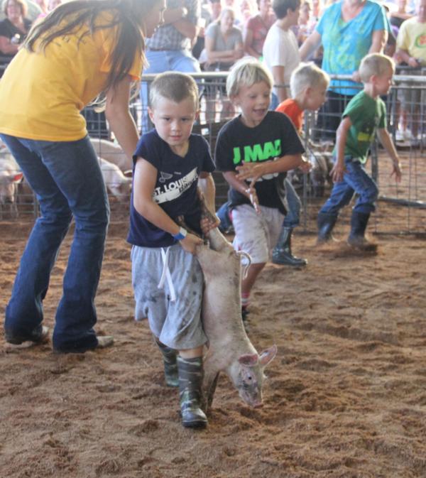 005 Fair Pig Chase 2014.jpg
